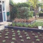 hoveniersbedrijf-hovenier-bestrating-tuin-tuinservice-tuinontwerp-tuinaanleg-tuinontwerp